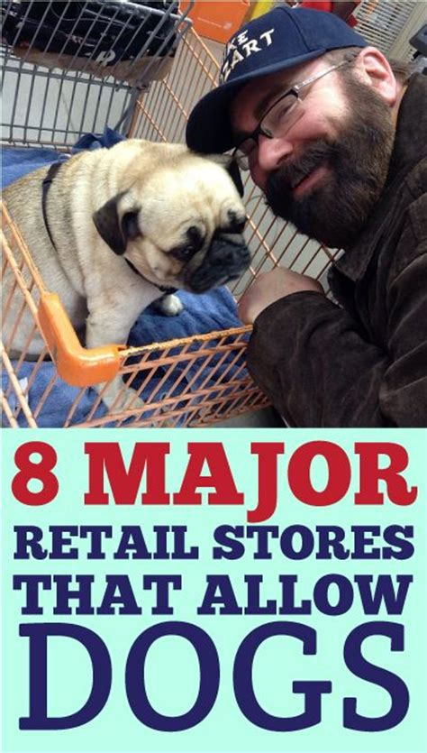 stores that allow dogs stores that allow dogs myideasbedroom