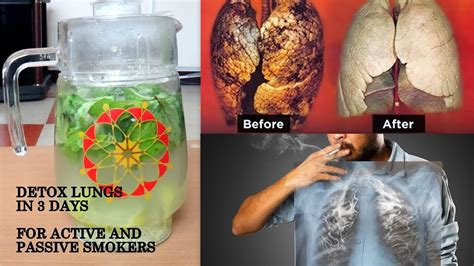 5 Herbs To Detox Lungs by Detox Smokers Lungs How To Clean Lungs After