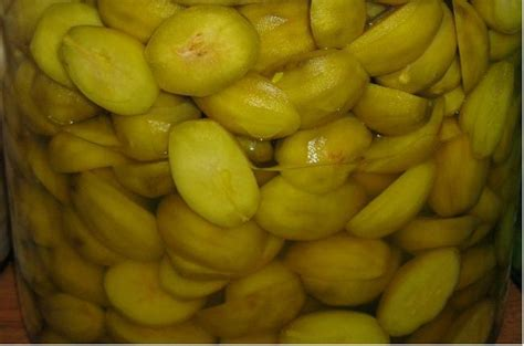 resep buat manisan mangga kering pembuatan manisan kedondong alami lebih sehat