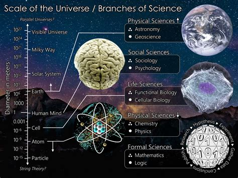 biography science definition file the scientific universe png wikimedia commons