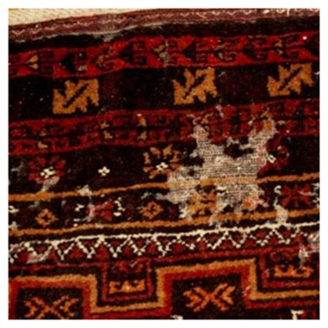 moth spray for wool rugs moth insect heirloom rug cleaning