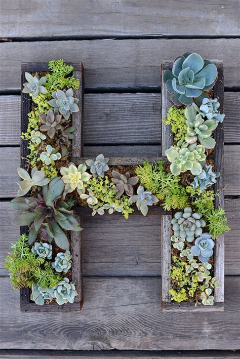 Succulent Letter Planter sublimeliving get gardening w your diy recycled