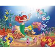 The Little Mermaid Wallpaper  6260676