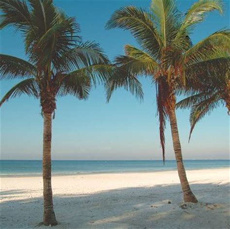 cheap boat rentals cape coral fl best 25 fort myers beach ideas on pinterest fort myers