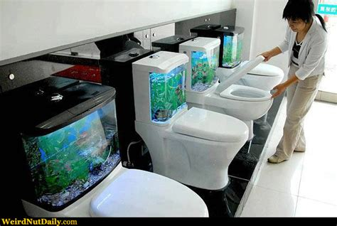 Bathrooms Design funny pictures weirdnutdaily fish bowl toilets