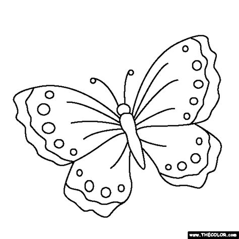 black and white coloring pages of butterflies butterfly w colouring pages