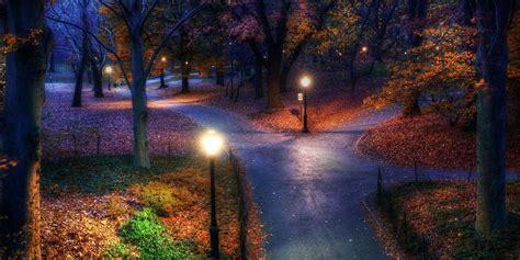 fall park new york city trees walkway light