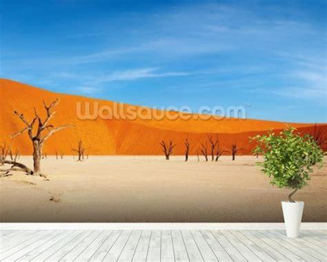 desert wall murals namib desert wallpaper wall mural wallsauce