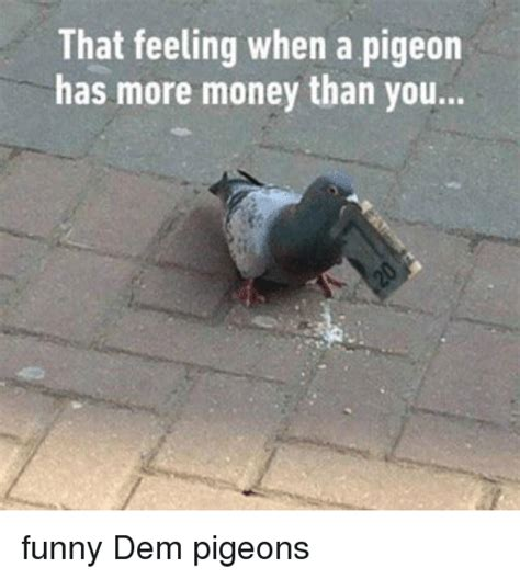 Has More Money Than You by That Feeling When A Pigeon Has More Money Than You