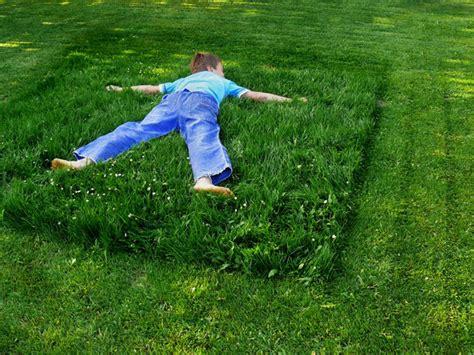 garten naturnah gartengestaltung naturnah 10 tipps f 252 r biogarten