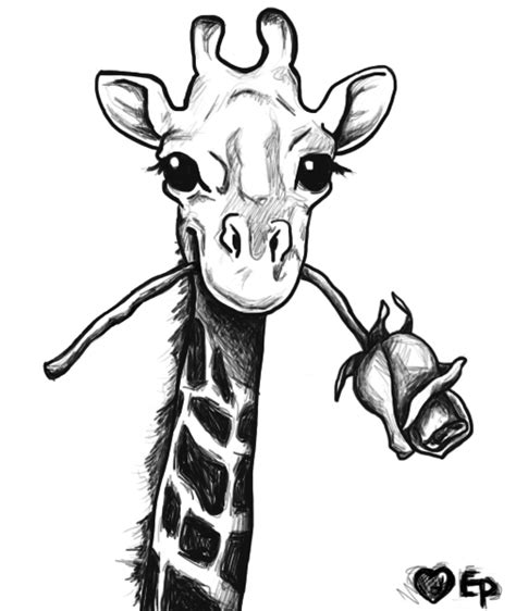 pattern giraffe drawing giraffe drawing google search ideas for design