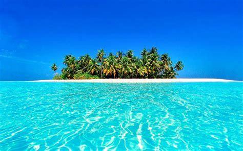 Tropical Image 9763   HDWPro