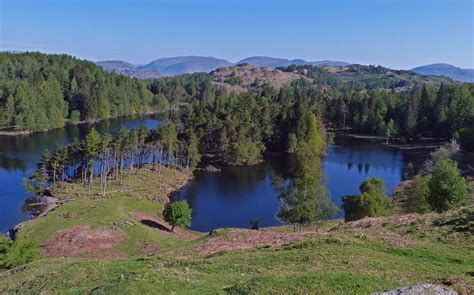 Family Area by Tarn Hows Visit Cumbria