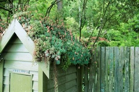 living green roof advantages the living roof the and advantages of