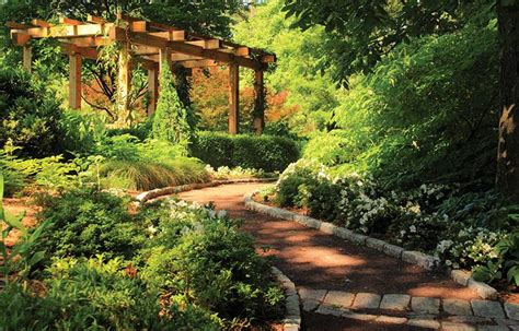 doris duke center gardens duke gardens