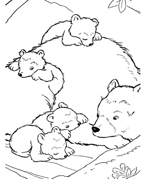 Grizzly Bear Coloring Page Animals Town Animals Color