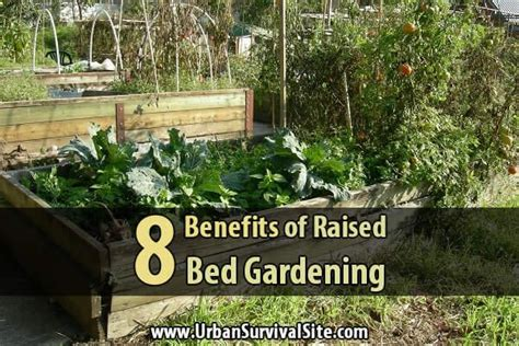 benefits of raised garden beds 8 benefits of raised bed gardening urban survival site
