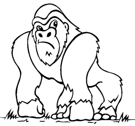 Coloring Now 187 Blog Archive 187 Monkey Coloring Pages Monkey Coloring Pages
