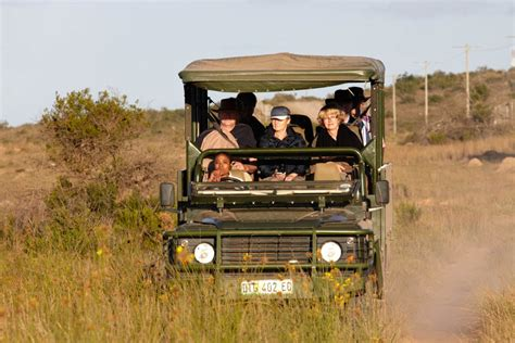 african safari jeep south africa wine tour safari photos bkwine tours
