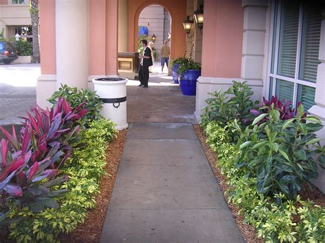 25 cozy landscapers in jacksonville fl inspirations landscape ideas