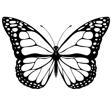 butterfly template clipart best