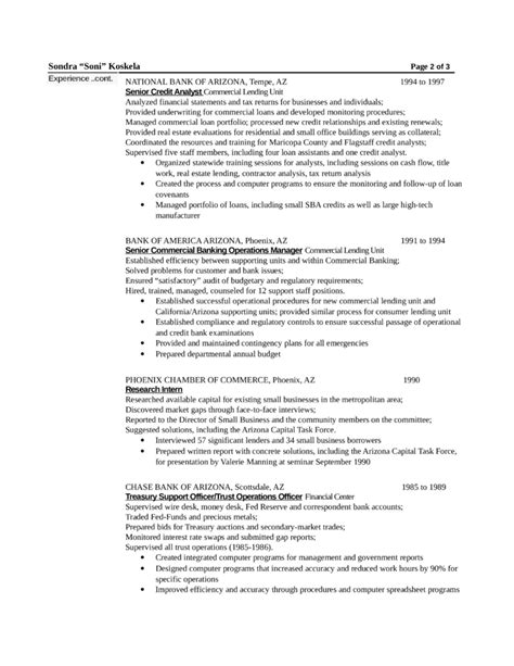 combination webmaster resume template page 2