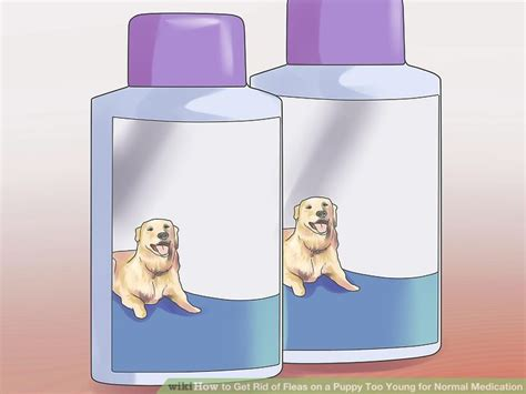 fleas on newborn puppies how to get rid of fleas on a puppy for normal medication