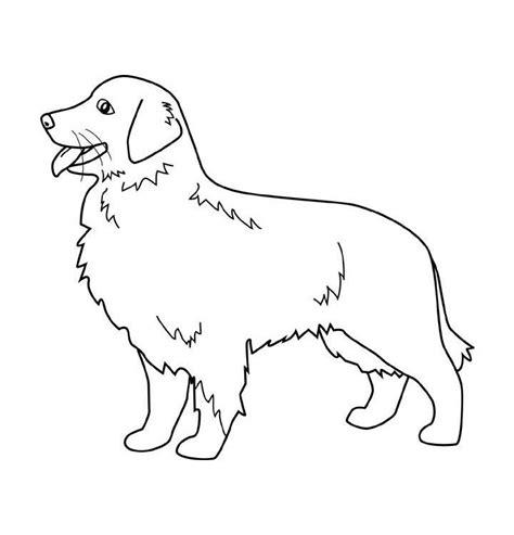 imagenes animales para pintar dibujos de perros para colorear dibujos de razas de
