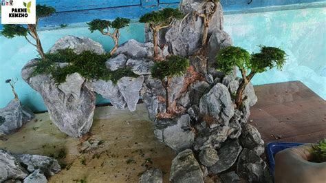 pakne kenzho aquascape membuat bonsai ukuran cm tema