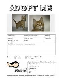 meow wuff adoption flyer templates