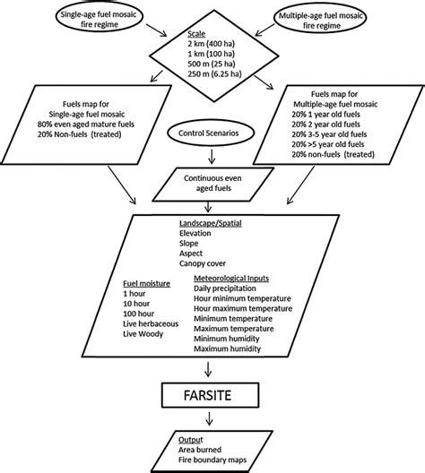 standard model flowchart conceptual diagram flow chart depicting the spatial