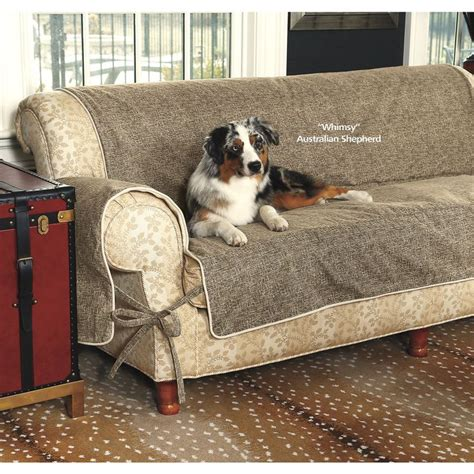 couch protectors from dogs the 25 best couch protector ideas on pinterest pet