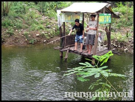 backyard fishpond philippines tilapia fish pond philippines
