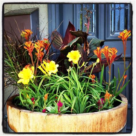 Small Wine Barrel Planter by Wine Barrel Planter Cannas Day Lilies Ornamental Grass