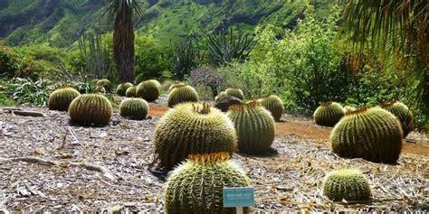 Koko Crater Botanical Garden Koko Crater Botanical Garden Weddings Get Prices For Wedding Venues