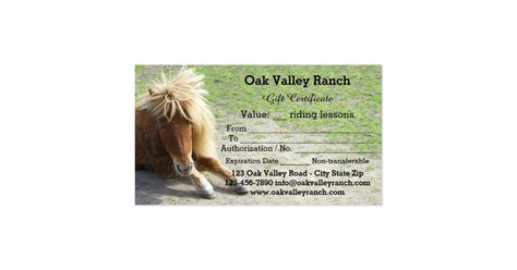 Horse Riding Lessons Gift Certificate Template Business Card Zazzle Horseback Gift Certificate Template