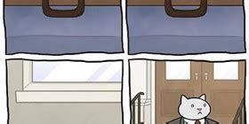 cama vs cama ejecutivo gatito disfrazado de le 243 n