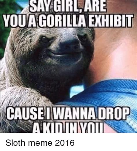 Fitness Sloth Meme - sloth fitness meme 100 images beautiful 30 sloth