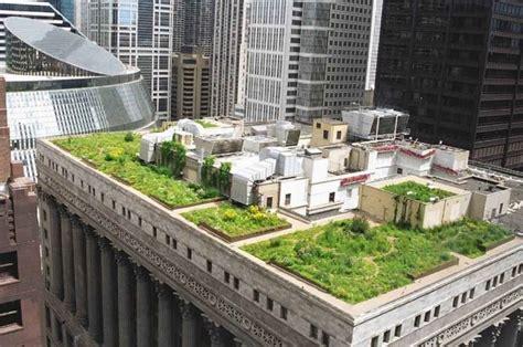 piante per giardini pensili progettazione giardini pensili giardini pensili