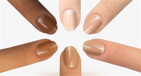 fingernail color nail nail clipart fingernail color nail png image