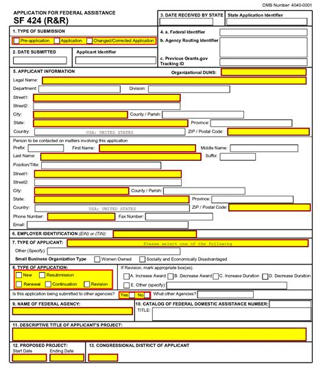 Title Application Meaning G 200 Sf 424 R R Form