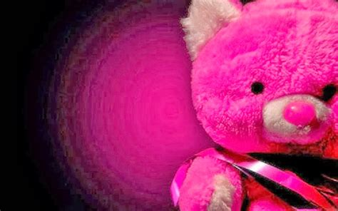 wallpaper pink teddy bear wallpaper autumn pink teddy bear hd wallpapers free download
