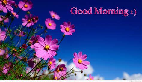 wallpaper hd good morning good morning