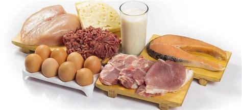 alimentos con alto contenido en proteina tabla de alimentos ricos en prote 237 nas
