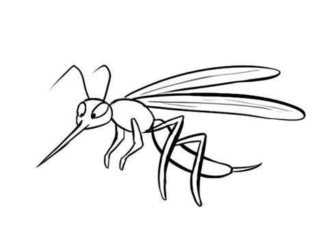 imagenes del zika en blanco y negro dibujo de un mosquito im 225 genes de insectos para colorear