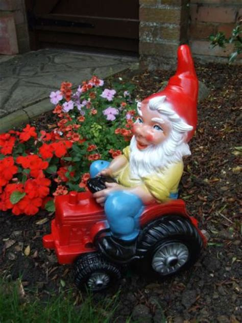 Garden Gnome Names by 25 Best Ideas About Gnome Names On