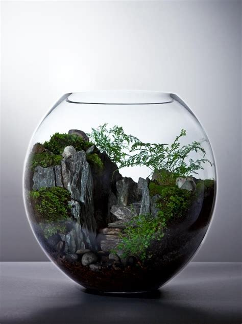 bioattic awesome terrariums gardening pinterest