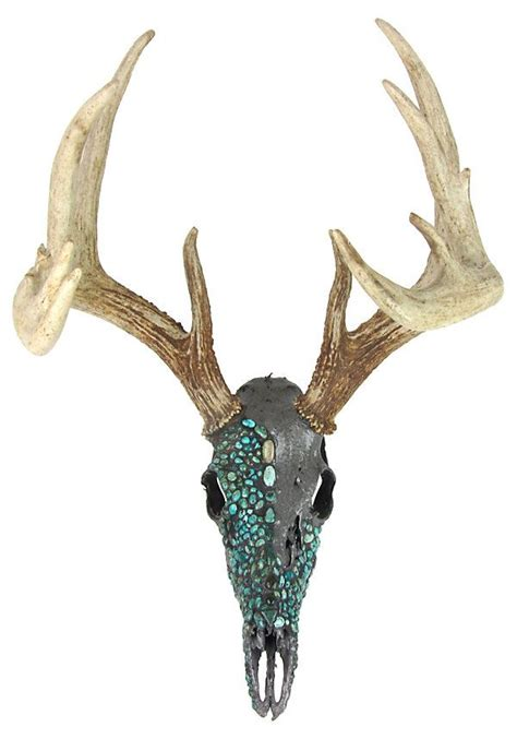 Decorated Deer Skull by 25 Best Ideas About Deer Skull On Deer