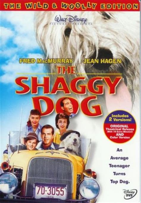 the shaggy cast the shaggy 1959 on collectorz