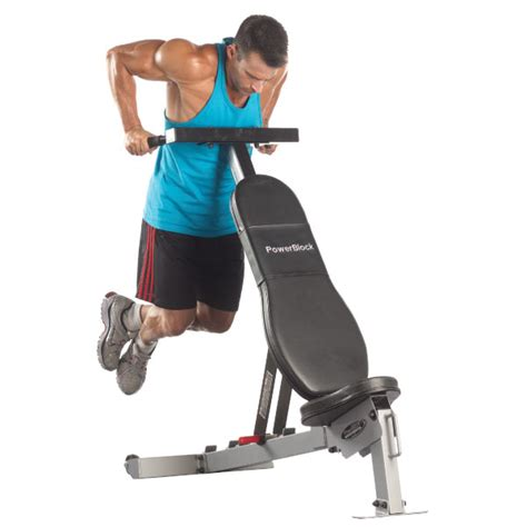 dips off bench dips off bench 28 images tricep dips the easiest no